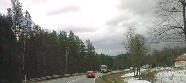 Miłogórze: piękna droga pośród lasu - full image