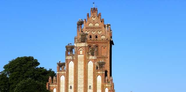 Lwowiec: bociani kościół - full image