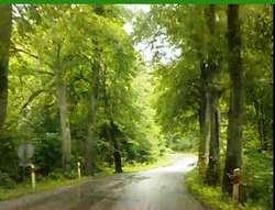 Droga Nikielkowo - Łęgajny