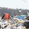 Rekultywują składowiska odpadów