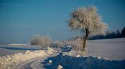 Zasypało nas pięknym śniegiem