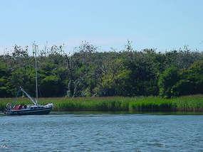 Rezerwat Przyrody Jezioro Dobskie