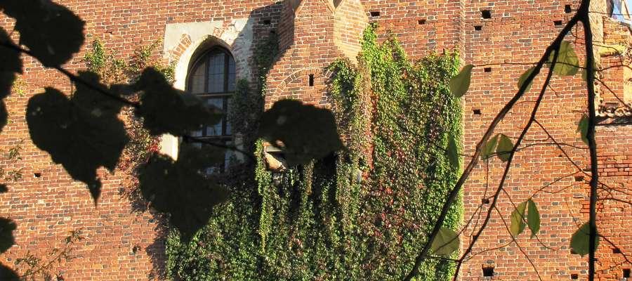Toaleta Kopernika na olsztyńskim zamku. Widok od strony murów zamowych