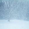 Uwaga. We wtorek 19 marca możliwe śnieżyce
