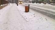 8600 zł — tyle kosztuje dziennie zimowe utrzymanie miasta