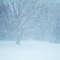 Uwaga! Śnieżyce i wichury, mogą przejść burze