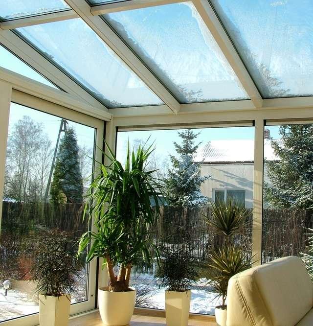 Ogród Zimowy Zielony Przez Cały Rok Dom