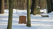 Snopki: cmentarz ewangelicki