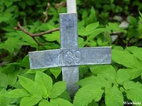 Cmentarz ewangelicki w Wiewiórkach