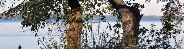 Jezioro Dadaj - full image