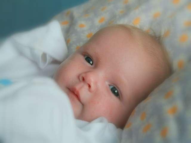 Nowe książeczki zdrowia dla każdego noworodka - full image