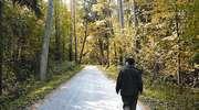 Szlak pieszy im. Karola Małłka  (żółty)