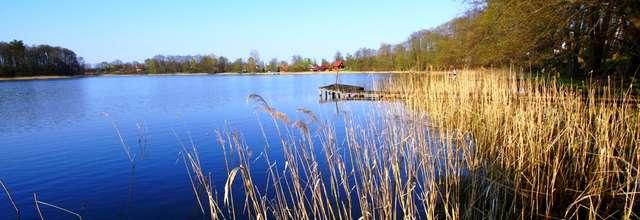 Jezioro Wejsunek - full image