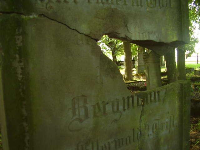 Na cmentarzu zachowało się kilkanaście nagrobków - full image