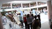 11 tys. kandydatów do studiowania w Olsztynie. Najwięcej chętnych ma medycyna