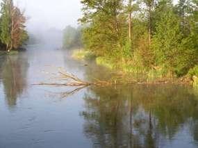 Rezerwat Przyrody Ostoja Bobrów Bartosze