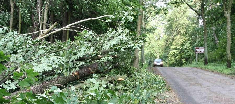 Drzewa zatarasowały drogę Kruklanki - Jeziorowskie