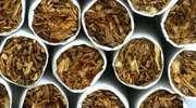 USA bliżej zakazu papierosów mentolowych
