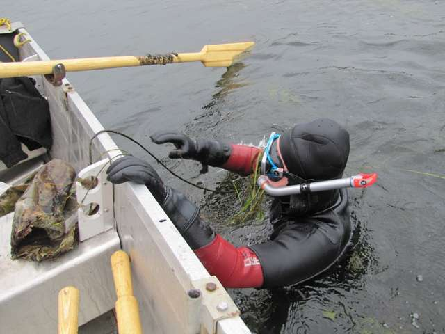 Jesienne sprzątanie Krutyni – królowej mazurskich rzek - full image