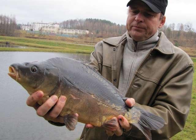 - Nasza ryba jest zdrowa, dorodna i smaczna - przekonuje Dariusz Mydło z Gospodarstwa Rybackiego w Mrągowie - full image