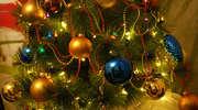 Wigilia pod tolkmickim niebem. W sobotę świątecznie na targowisku miejskim