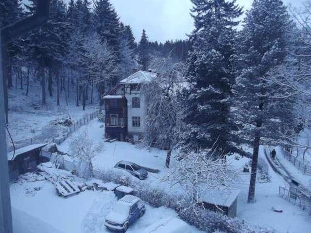Zimy nie ma, ale są zdjęcia - full image