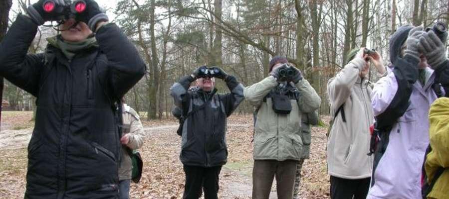 Przy okazji Zimowego Ptakoliczenia miłośnicy przyrody organizują wycieczki ornitologiczne