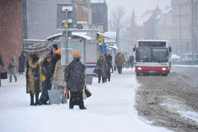 Zima nie odpuszcza. ZOBACZ ZDJĘCIA! - full image