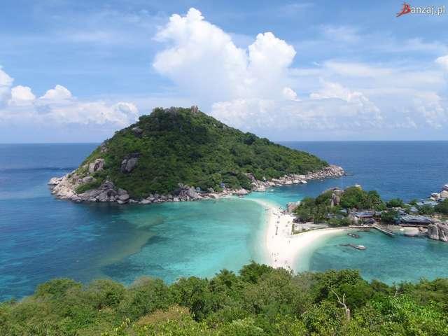 Wyspę Ko Tao upodobały sobie nie tylko żółwie. To także ulubione miejsce nurków  - full image