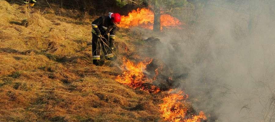 Pożar suchej trawy w Marianowie
