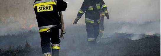 Wypalanie traw może doprowadzić nie tylko do zniszczenia ekosystemu, ale także trudnego do opanowania pożaru