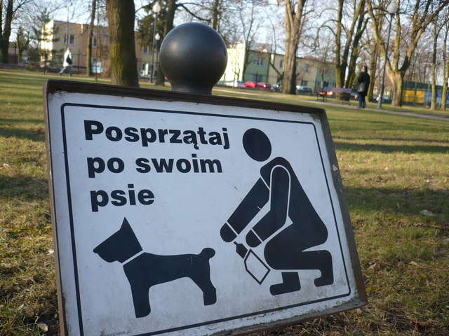 Donos goni donos, więc sprzątaj po swoim psie - full image