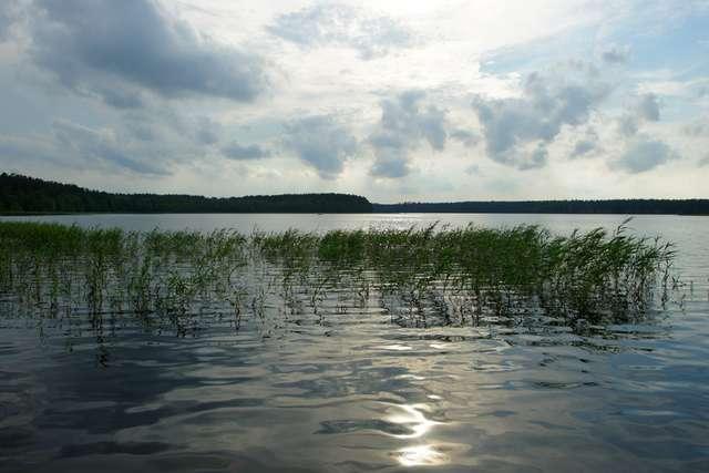 Widok od strony miejscowości Jabłoń - full image