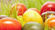 Wielkanocne paczki dla kombatantów