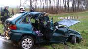 Jeleń przyczyną wypadku pod Bartoszycami. Trzy osoby ranne
