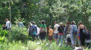 Wizyta w Arboretum w Kudypach