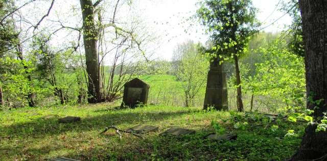Wierciejki: cmentarz z I wojny światowej  - full image