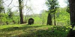 Wierciejki: cmentarz z I wojny światowej
