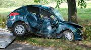 Peugeot uderzył w drzewo. Na miejscu zginął ratownik medyczny