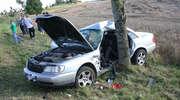Uderzył w drzewo na prostej między Troszkowem a Bisztynkiem