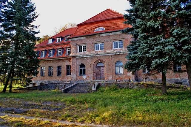 Okowizna: Neobarokowy pałac z początku XX wieku - full image