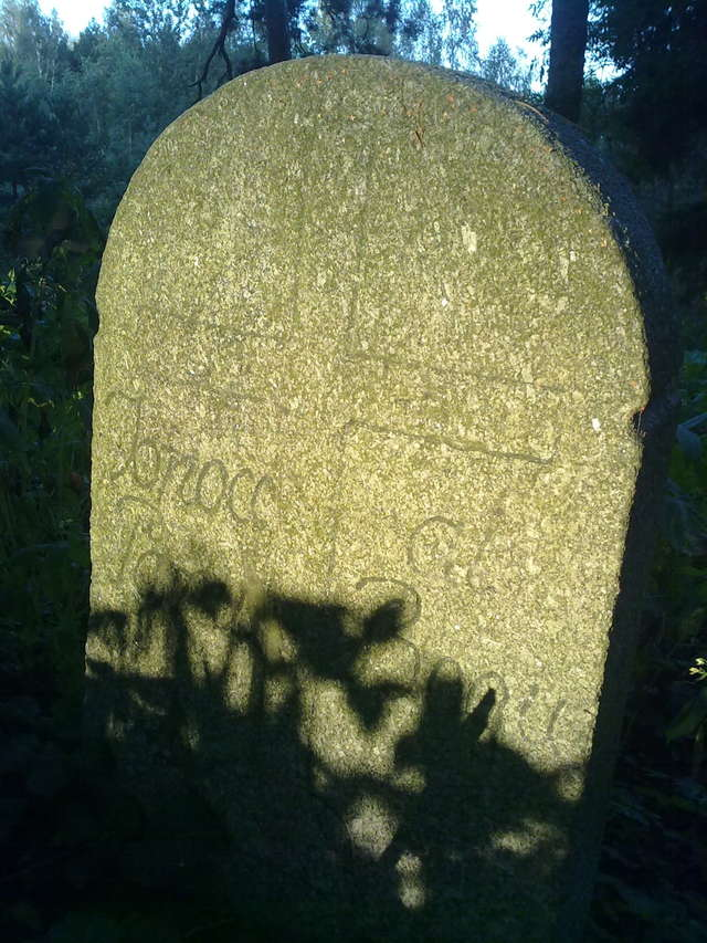 Wilkasy: stary cmentarz ewangelicki - full image