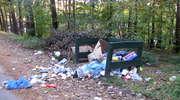 Burmistrz o śmieciach
