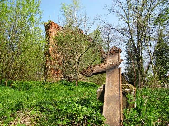 Wola Młynarska: Jedyny ocalały żeliwny krzyż, w tle ruiny kościoła - full image