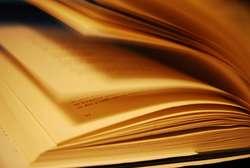 Atrakcje Światowego Dnia Książki w Olsztynie