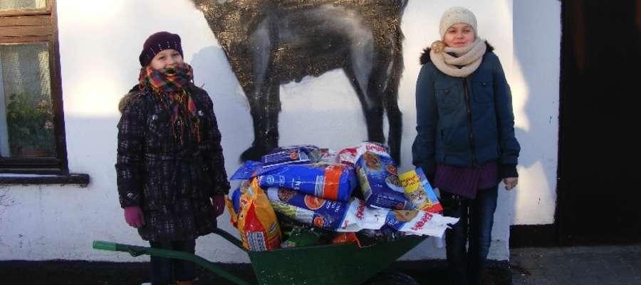 Uczniowie zawieźli karmę do schroniska w Brodnicy
