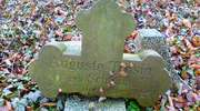 Orneta (Wormditt): stary cmentarz protestancki