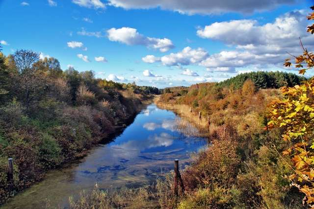Fragment Kanału Mazurskiego przebiega przez rezerwat Bajory - full image
