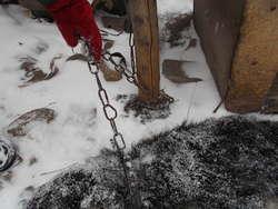 Łańcuch okręcił się wokół drewnianego słupa i pies nie mógł wejść do budy, aby się schować przed mrozem