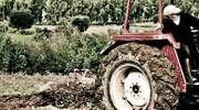 Drożeje ziemia rolna